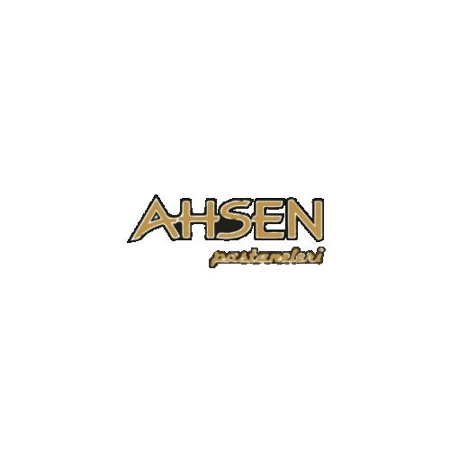 2-AhsenPastanesi