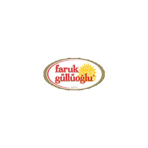 3-FarukGulluoglu